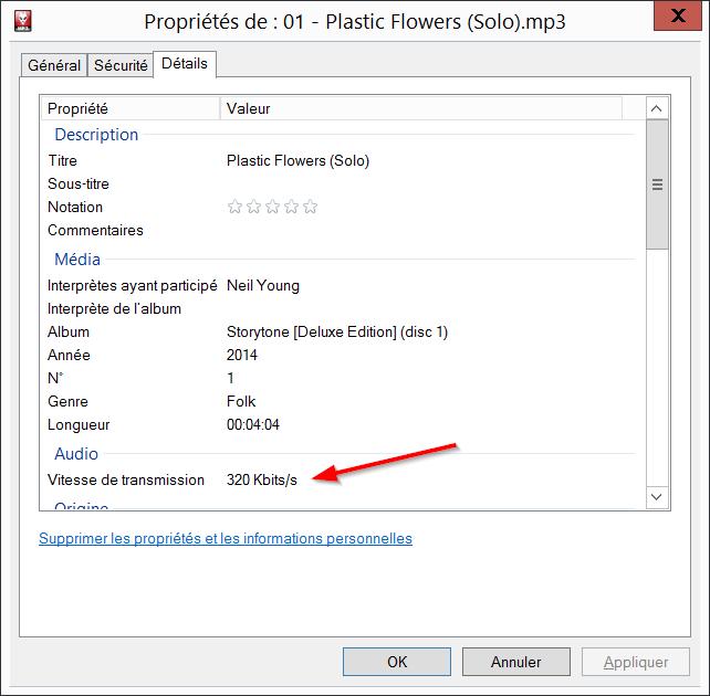 2015-01-25 15_23_58-Propriétés de_ 01 - Plastic Flowers (Solo).mp3
