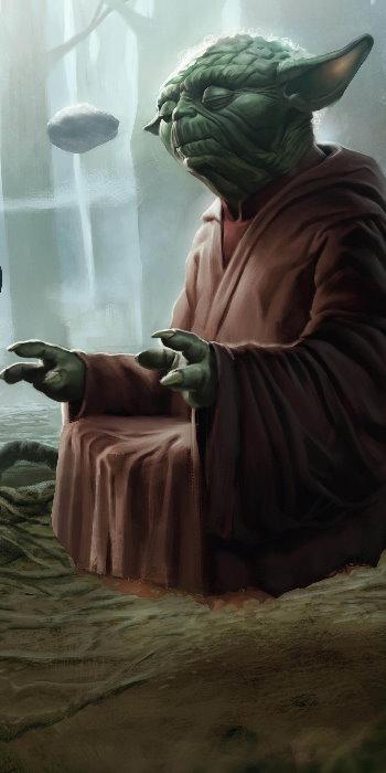 Yoda est un personnage fictif de l'univers Star Wars. Il apparaît pour la première fois dans Star Wars, épisode V : L'Empire contre-attaque en 1980. Il est le maître Jedi qui enseigne à Luke comment utiliser la Force